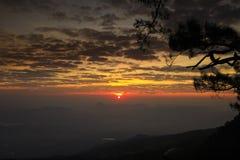 Lever de soleil à la falaise, avec des silhouettes d'arbre (NOK Ann de Pha) au parc national de Phukradung, la Thaïlande Images libres de droits
