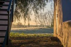 Lever de soleil à la ferme, les champs de blé éclairés à contre-jour par le soleil photos libres de droits