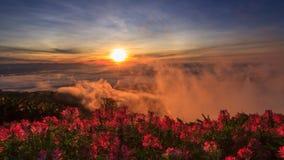 Lever de soleil à la montagne avec la brume banque de vidéos