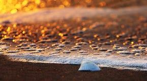 Lever de soleil à la plage Images libres de droits