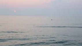 Lever de soleil à la plage clips vidéos