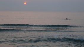 Lever de soleil à la plage banque de vidéos
