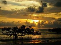 Lever de soleil à une plage Photos stock