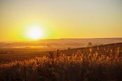 Lever de soleil étonnant sur le camino image stock