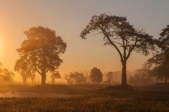 Lever de soleil africain Images stock