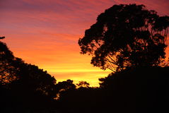 Lever de soleil africain Photo libre de droits
