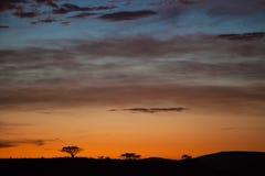 Lever de soleil africain Afrique du Sud Images libres de droits