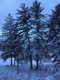 Lever de soleil après une tempête de neige Photo stock