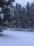 Lever de soleil après une tempête de neige Image libre de droits