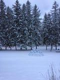 Lever de soleil après une tempête de neige Photographie stock libre de droits