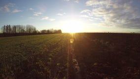 Lever de soleil au-dessus de champ labouré de terres cultivables d'automne, laps de temps 4K banque de vidéos