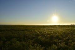 Lever de soleil au-dessus d'un étang photos stock