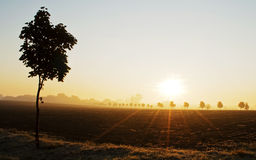 Lever de soleil au-dessus d'un paysage Image stock