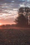 Lever de soleil au-dessus de champ moissonné Photos stock