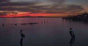 Lever de soleil au-dessus de compartiment de Galveston Images stock