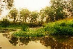 Lever de soleil au-dessus de fleuve Image libre de droits
