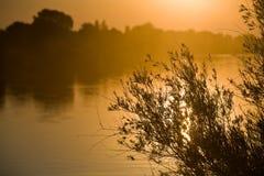 Lever de soleil au-dessus de fleuve de Sacramento Images libres de droits