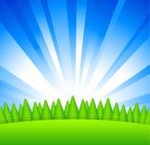 Lever de soleil au-dessus de forêt Image stock