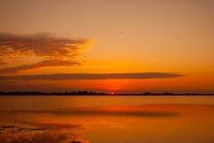 Lever de soleil au-dessus de l'estuaire Image libre de droits