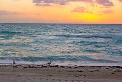 Lever de soleil au-dessus de l'océan dans Miami Beach Photos libres de droits