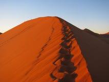 Lever de soleil au-dessus de la dune rouge 45 dans Sossusvlei, Namibie Photos stock