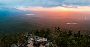 Lever de soleil au-dessus de la forêt de pin Image stock