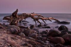 Lever de soleil au-dessus de la mer Image libre de droits