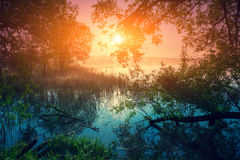 Lever de soleil au-dessus de lac image libre de droits
