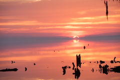 Lever de soleil au-dessus de rivière près du rivage Images stock