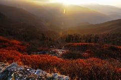 Lever de soleil au-dessus de vallée, Lungthang, Sikkim Image libre de droits