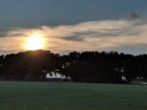 Lever de soleil au-dessus des arbres photo stock