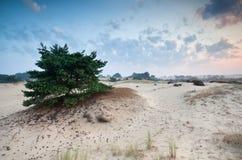 Lever de soleil au-dessus des dunes de sable Image stock