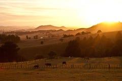 Lever de soleil au-dessus des terres cultivables pastorales Photos stock