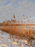 Lever de soleil au-dessus du lac figé Photos stock