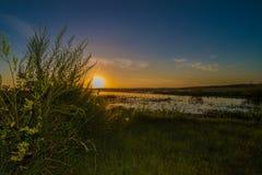 Lever de soleil au-dessus du lac marécageux photo stock