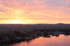 Lever de soleil au-dessus du marais Photos stock