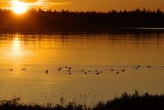 Lever de soleil au-dessus du port Photo libre de droits