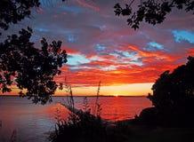 Lever de soleil au-dessus de l'île NZ de Rangitoto Images libres de droits