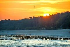 Lever de soleil au-dessus de la mer baltique avec des aines Photographie stock libre de droits