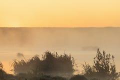 Lever de soleil au lac Images libres de droits