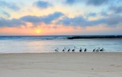 Lever de soleil au nord d'entrée, Australie Photo stock