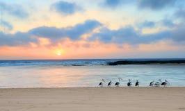 Lever de soleil au nord d'entrée, Australie Image stock
