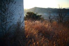 Lever de soleil autour de la construction Image stock