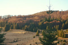 Lever de soleil aux montagnes Photos libres de droits