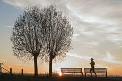 Lever de soleil avec le silhouet des arbres et du coureur Photo stock