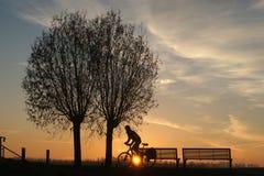 Lever de soleil avec le silhouet des arbres et du cycliste Photographie stock