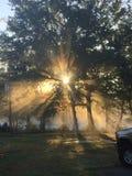 Lever de soleil de bayou images stock