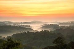 Lever de soleil de Beautyful dans la forêt de paysage de montagnes Photo libre de droits