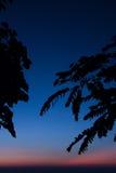 Lever de soleil bleu de ligth dans le dessus de la montagne Photographie stock libre de droits