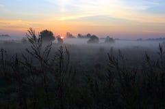 Lever de soleil brumeux Photo libre de droits